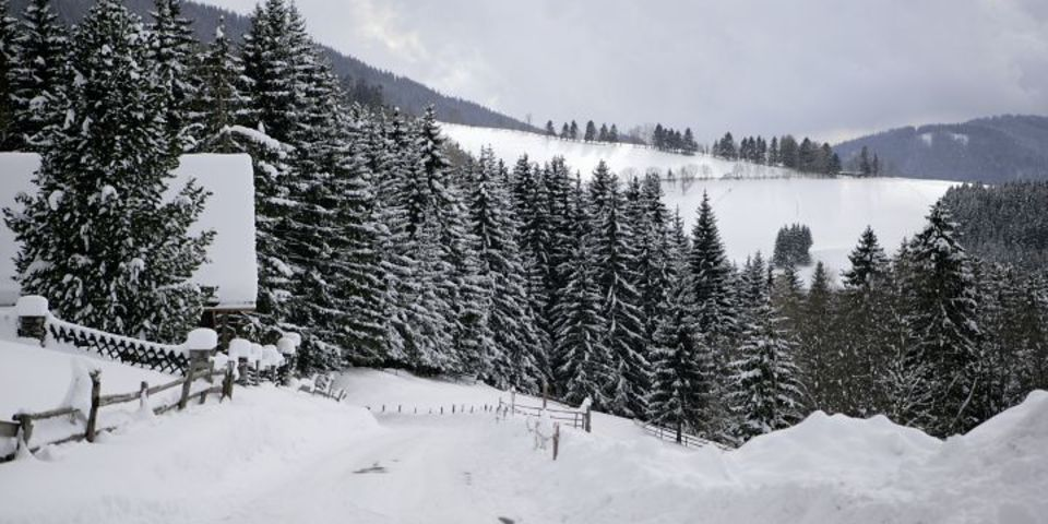 Winterpanoramagschaid