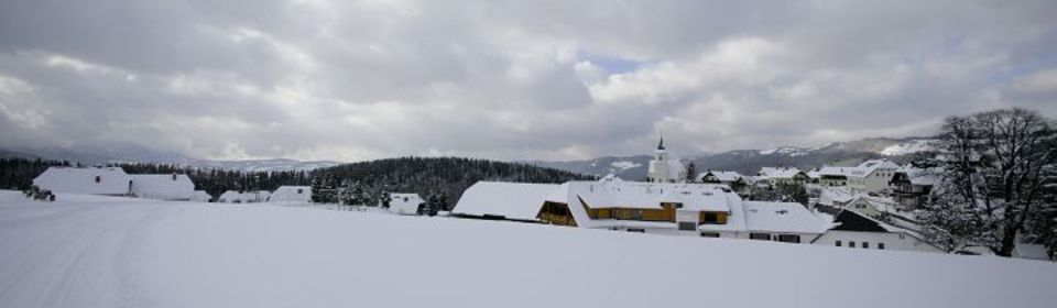 Winterpanoramadorf